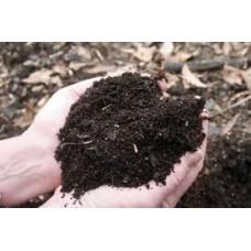 Soil Conditioner (Enricher)